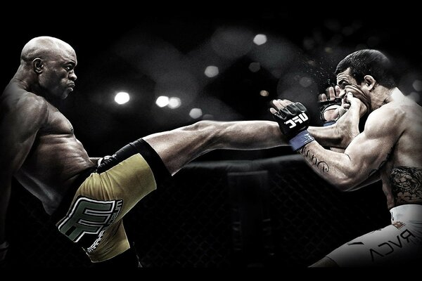 anderson silva Ufc mix fight Anderson Silva punch mma