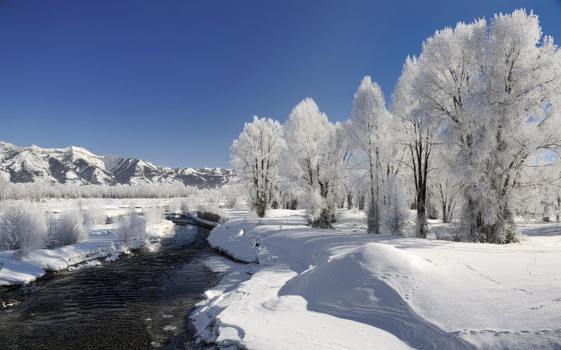 речка мороз зима the river frost winter  № 456318 бесплатно