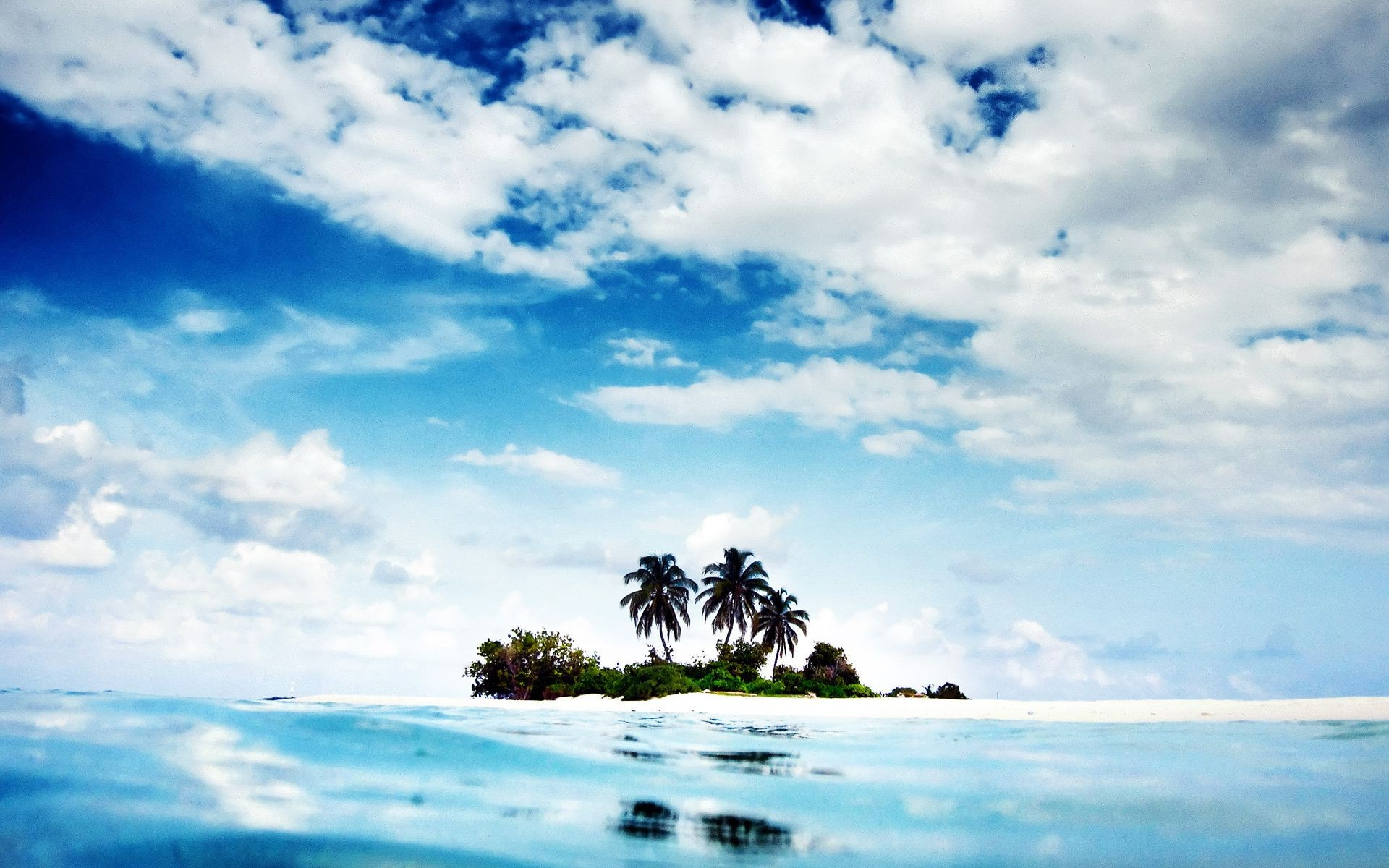 island ocean Nature palm trees water landscape sky