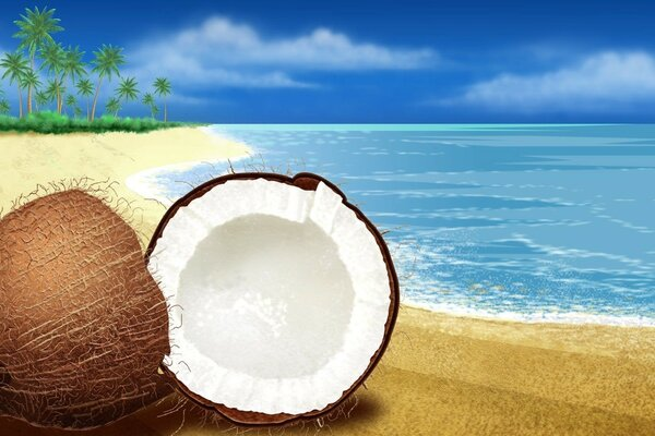 Summer beach coconut