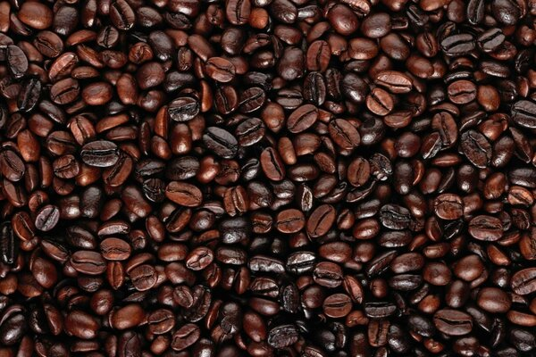 Coffee Beans Dark