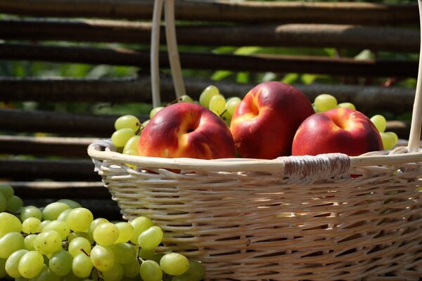 Nectarines And Grapes