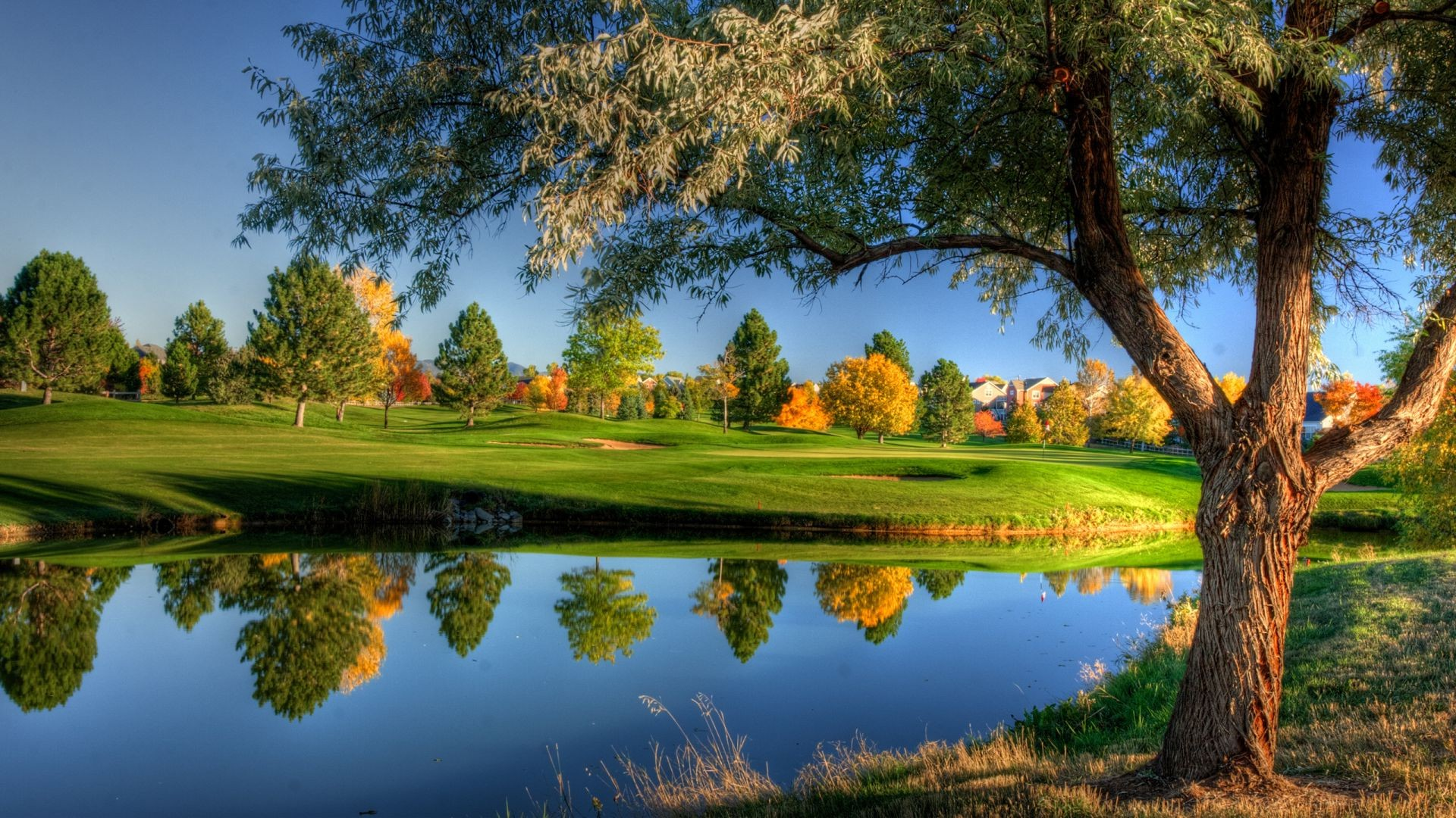 trees tree landscape lake grass nature outdoors sky pool scenic reflection water summer golf wood park fall river countryside idyllic