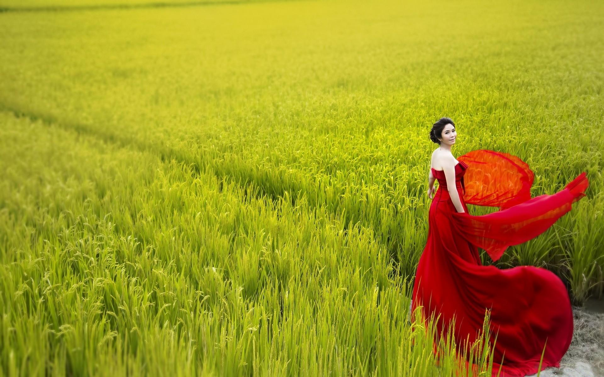девушка природа белое платье цветы желтые  № 3832577 без смс