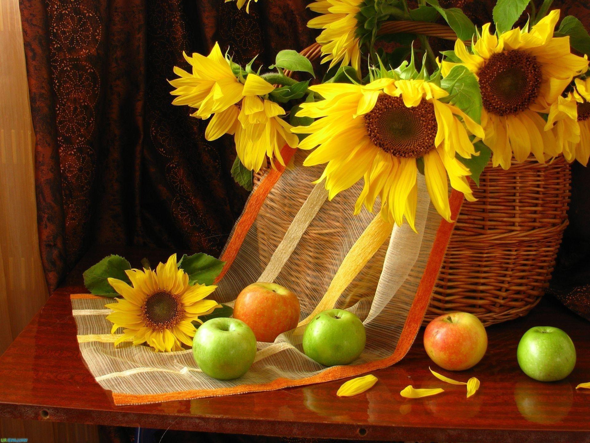 Flowers Apples Still Life Petals Fruit Sunflowers Phone