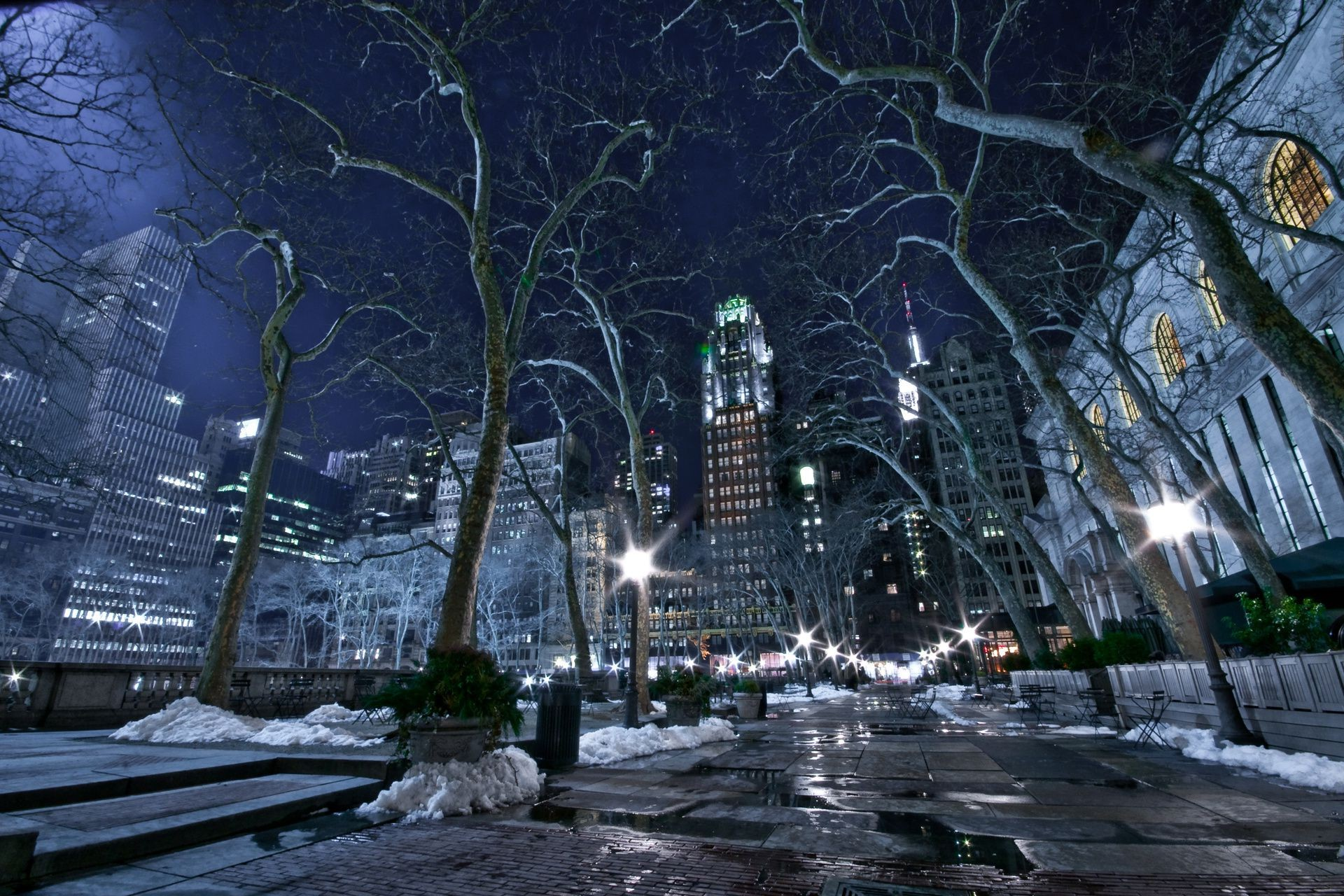 new York City winter night lights