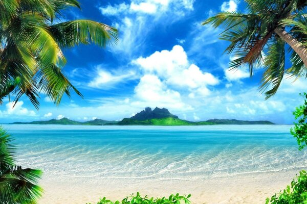 Palm tree sea ocean water sand beach, the green of the mountain sky