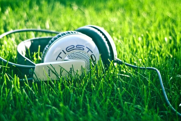 Headphones Tiesto