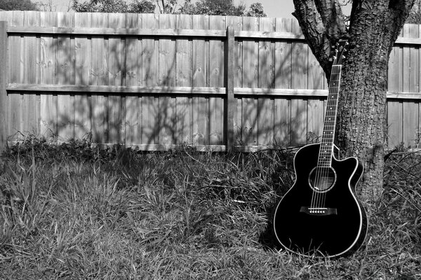 My Black Acoustic