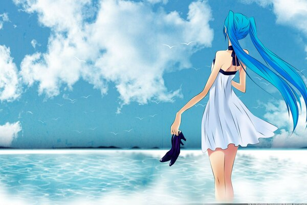 sea girl Vocaloid hatsune miku sky shoes birds