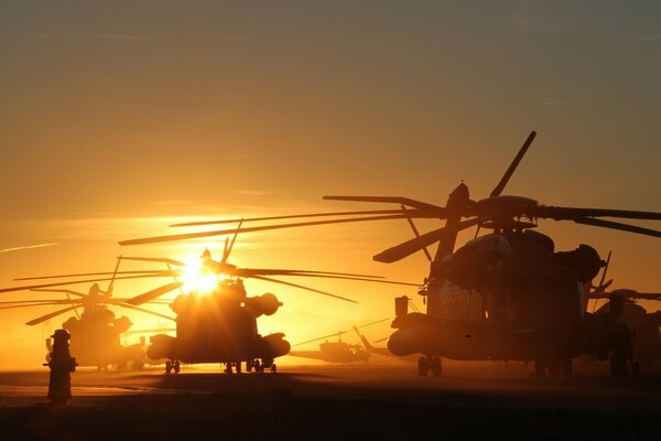 Helicopters At Sunset
