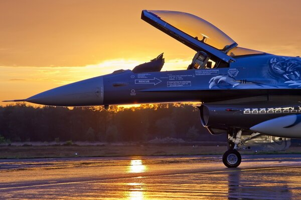Military Aircraft, Sunrise