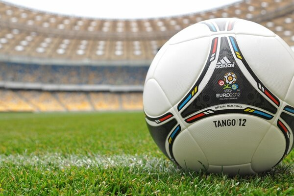 sports football Euro euro Euro 2012 the ball the grass stadium