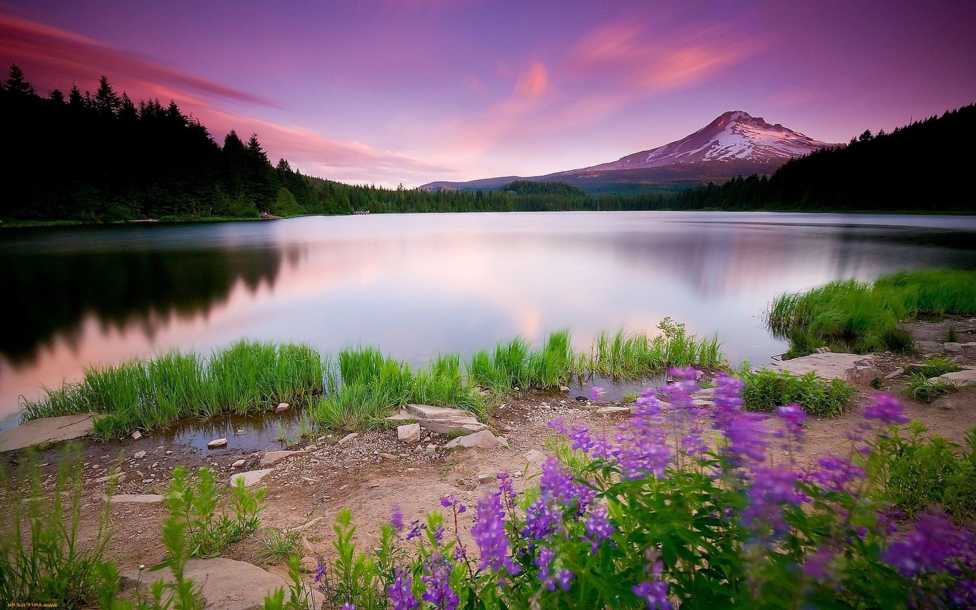 Nature Wallpaper Android Wallpapers For Free
