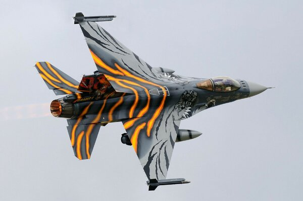 fighter fighting falcon f-16am Virage