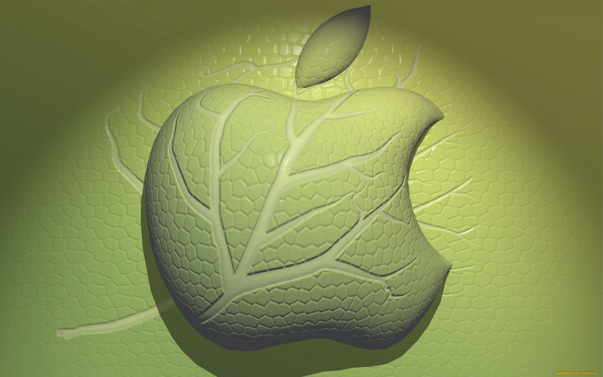 apple desktop abstract illustration color texture shape leaf design pattern