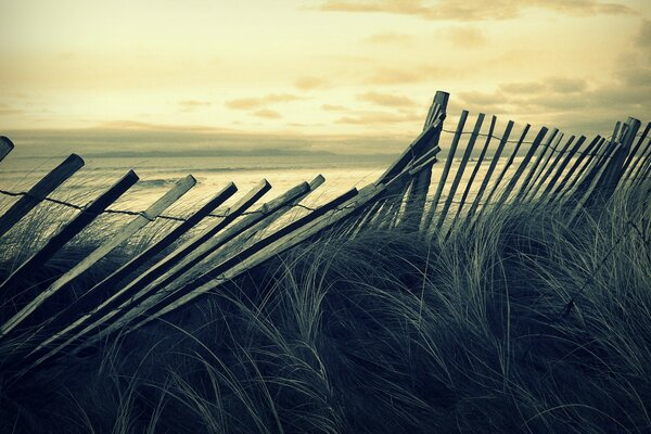 Beach Wooden Fence