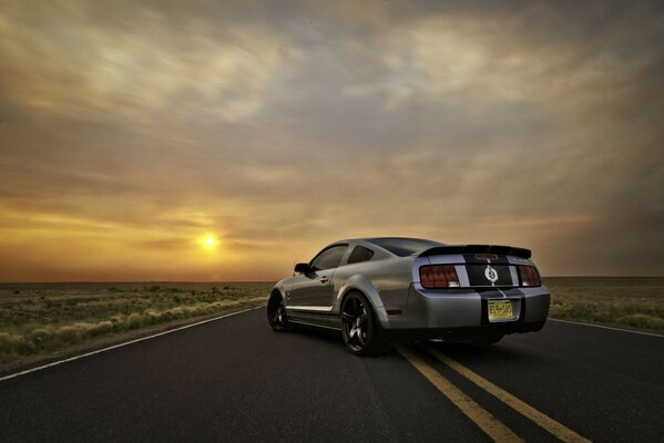 ford shelby gt500 Ford mustang muscle car silvery