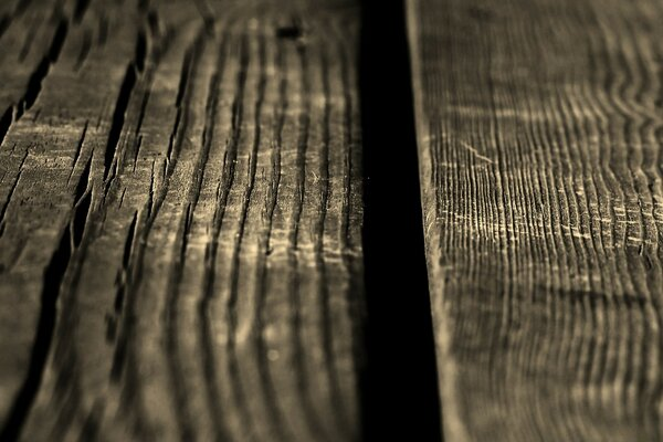 Wood Boards, Macro