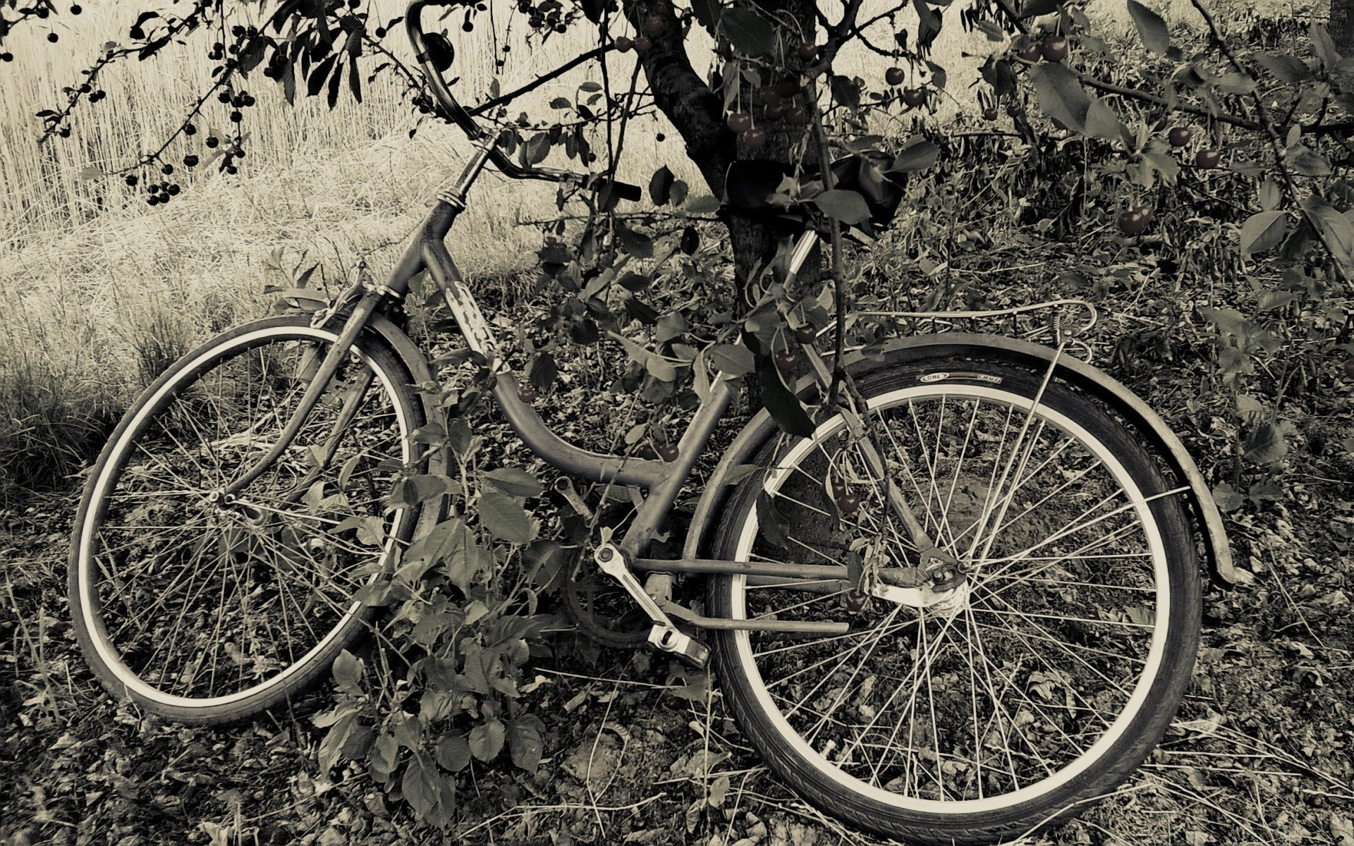 Брошенный велосипед загрузить