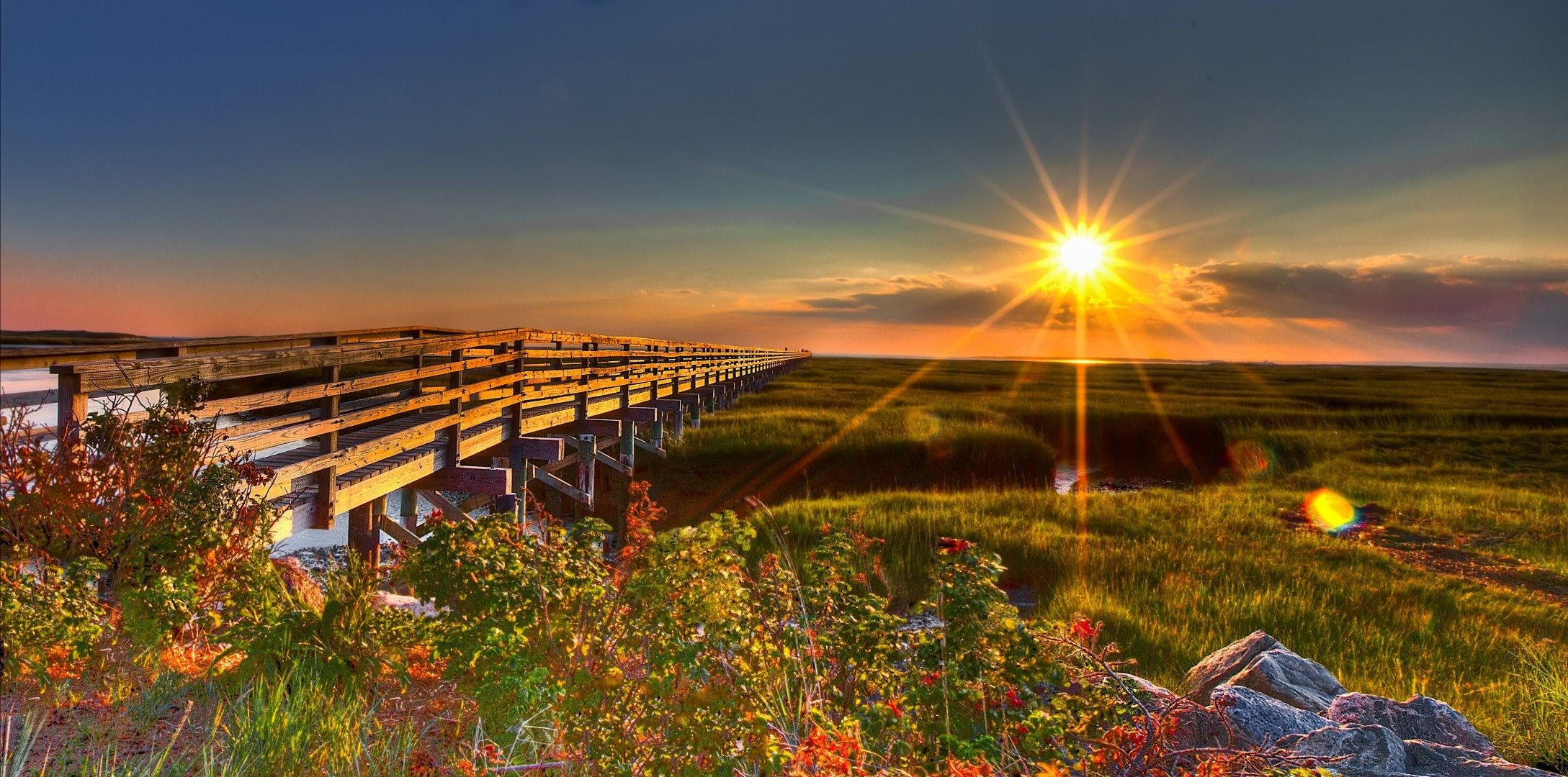 Sunrise nature field bridge