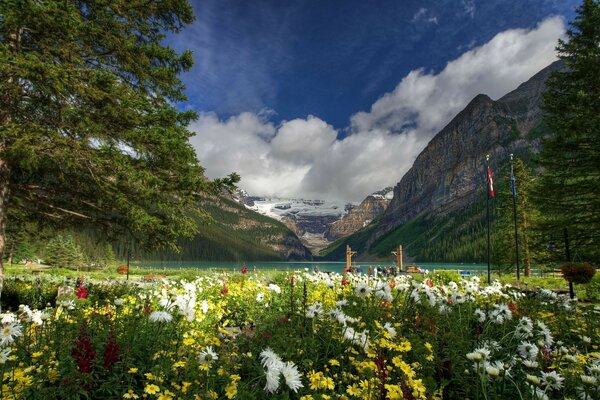 Lake Louise Canada Banff National Park Canada lakes mountains