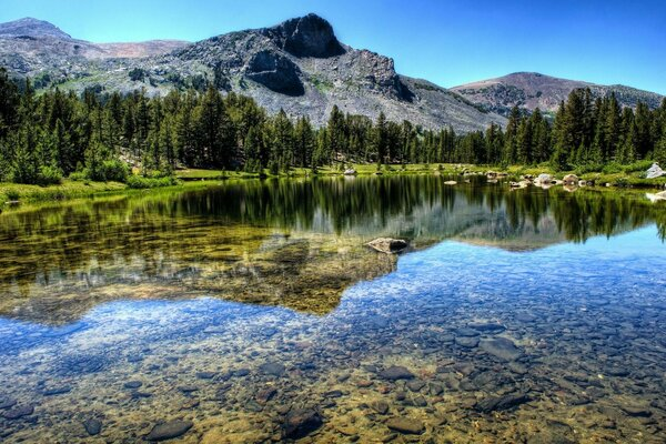 Mountain forest river lake landscape nature Yosemite National P