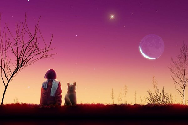 star cat of the sunset moon evening girl Art landscape