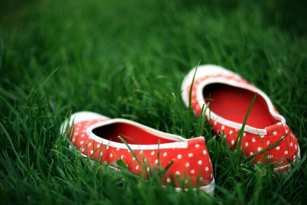 Red Shoes In Green Grass