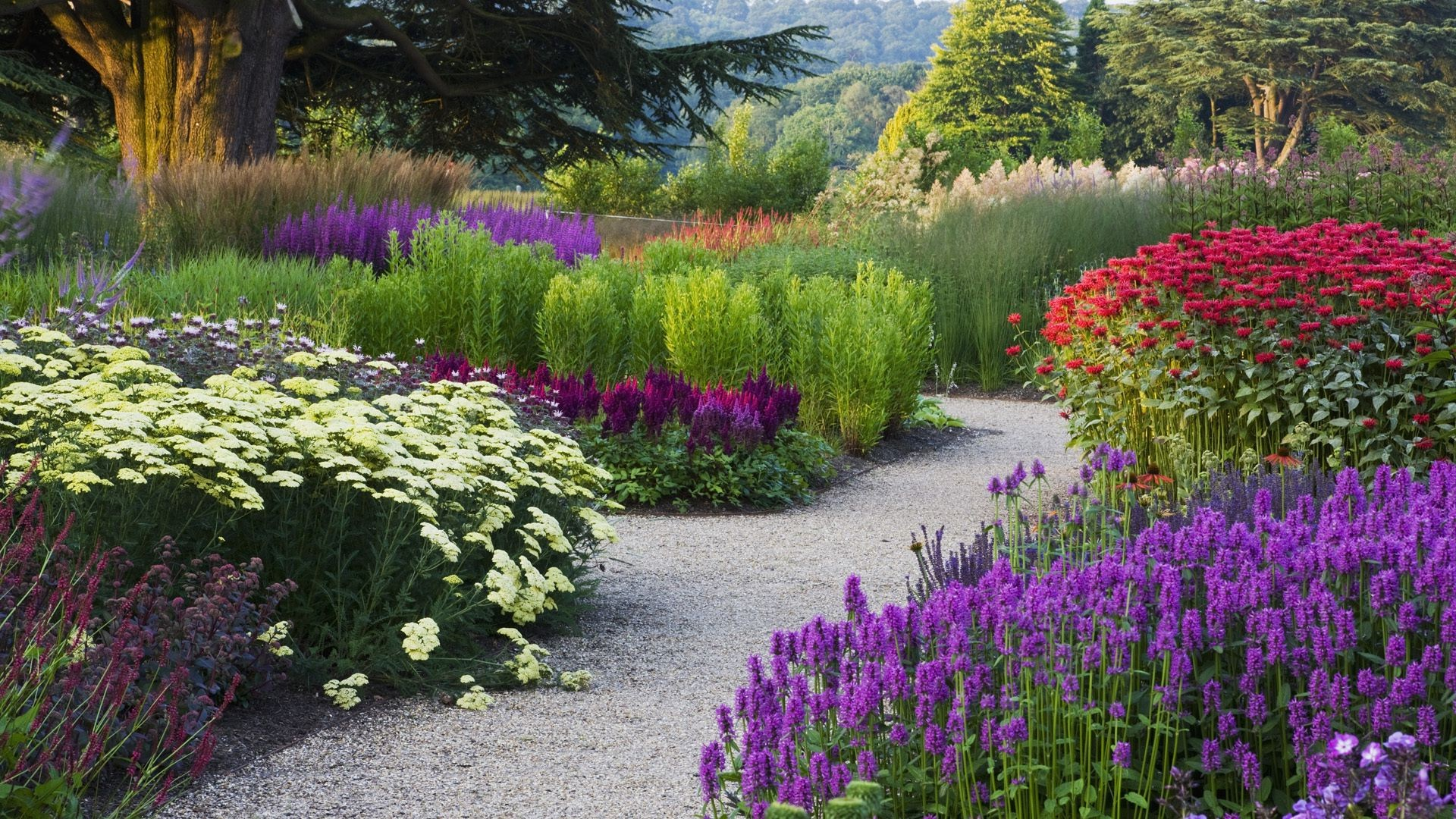 Trees Path Different Path Garden Park Flowers