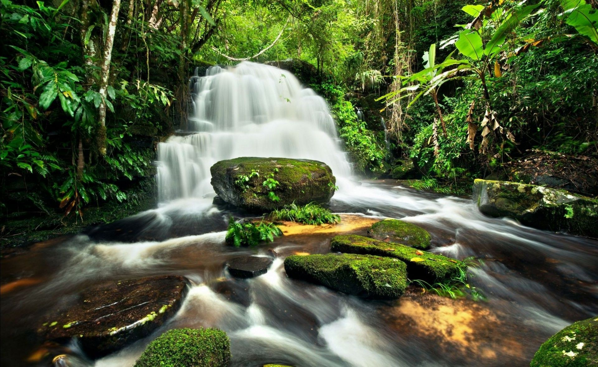 Nature waterfall jungle forest rocks river
