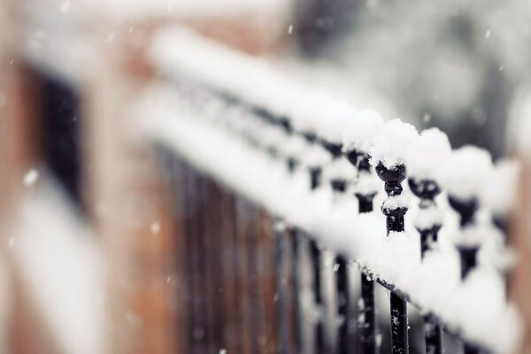 focus fence snow winter snowflakes fence is a Fence