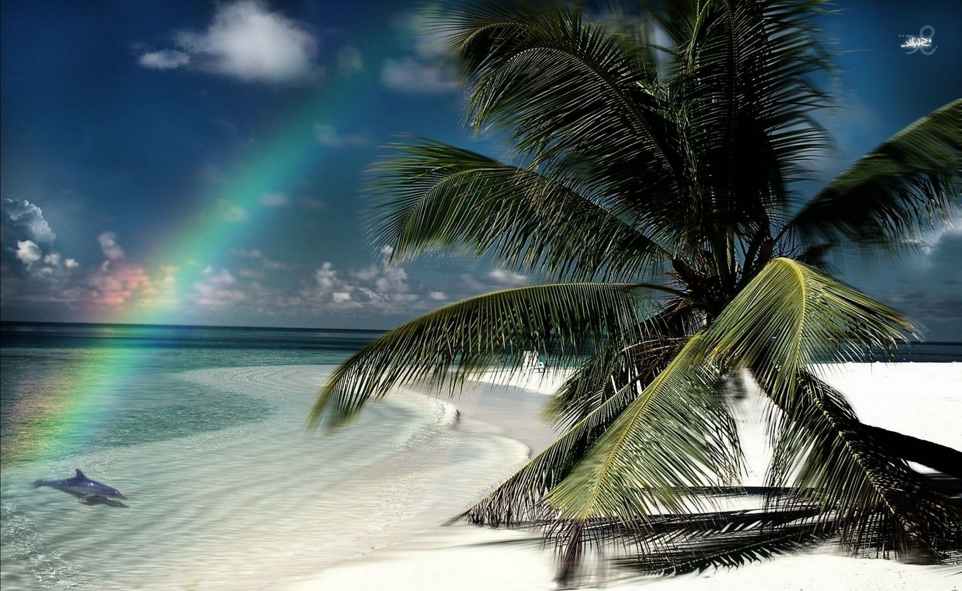 rainbow tropical beach ocean palm sand water exotic paradise seashore island seascape resort travel sun coconut summer lagoon