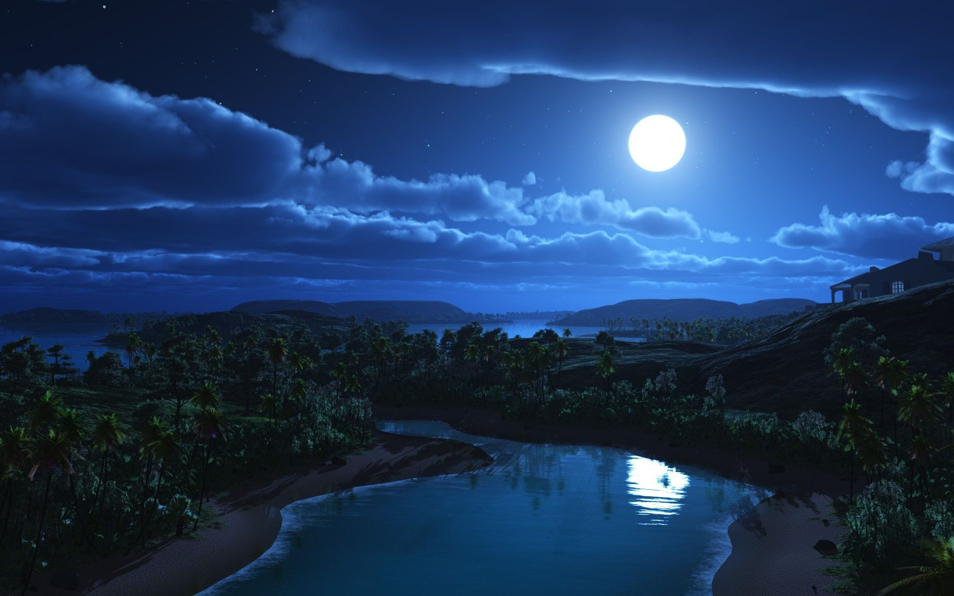 The hills, the moon and palm trees. Beautiful night landscape
