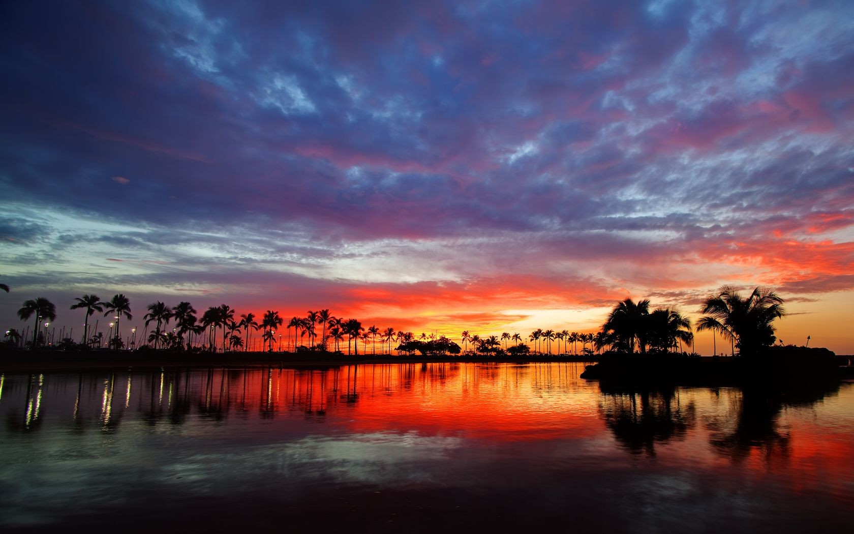 sky water sunset hawaii palm trees