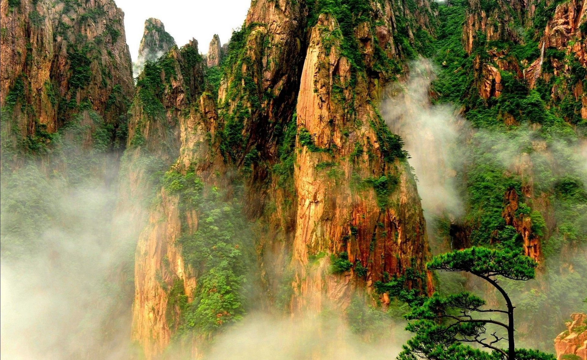 parks nature outdoors wood landscape tree mist travel park fog fall water scenic mountain environment leaf summer