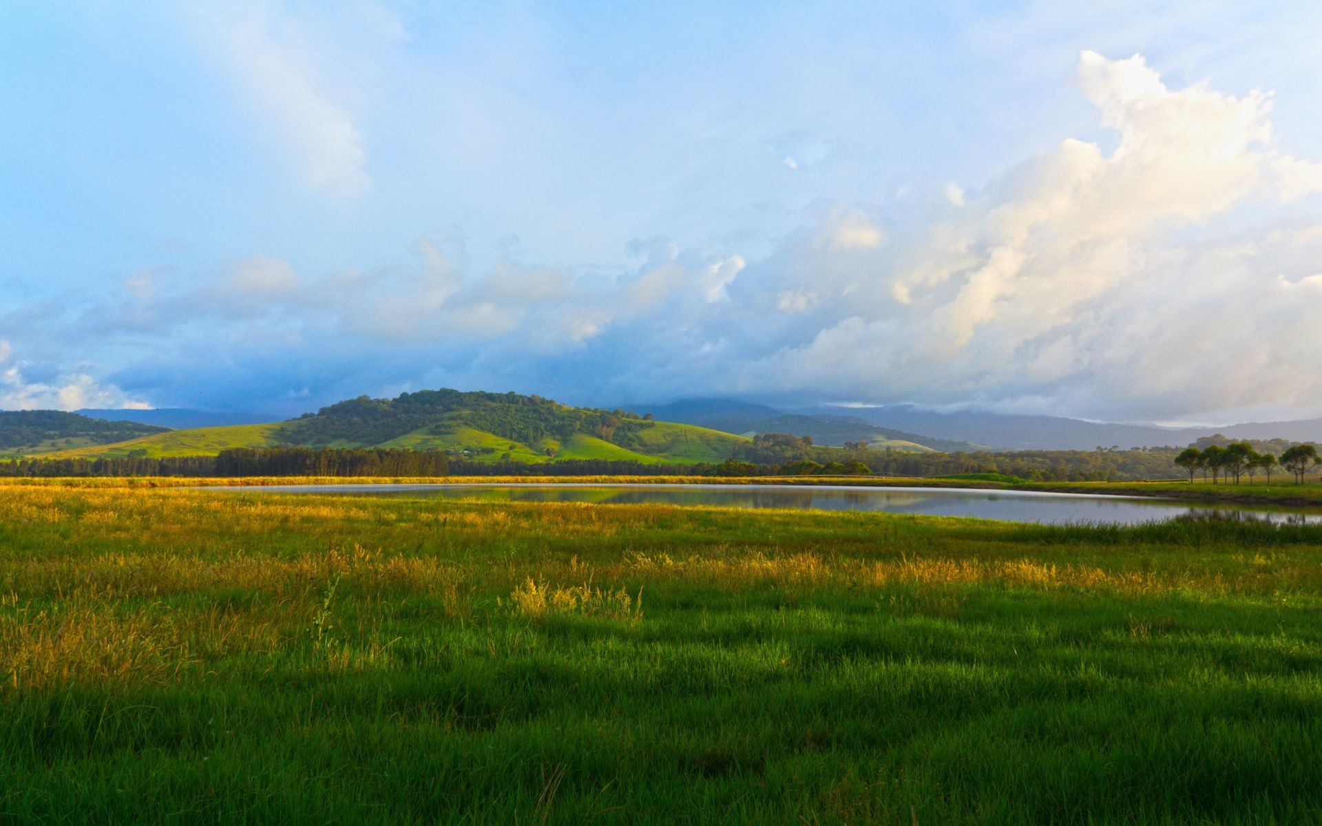 landscape nature green grass trees lake sky. android wallpapers for