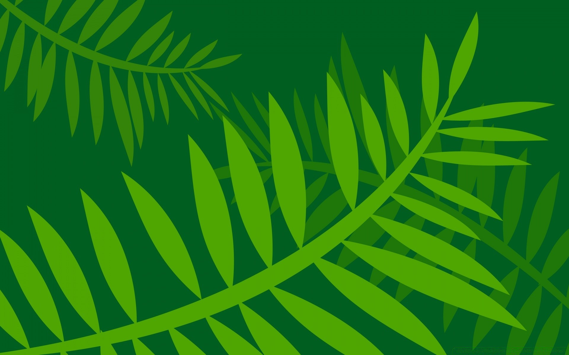Jungle Leaves Vector Art Android Wallpapers For Free