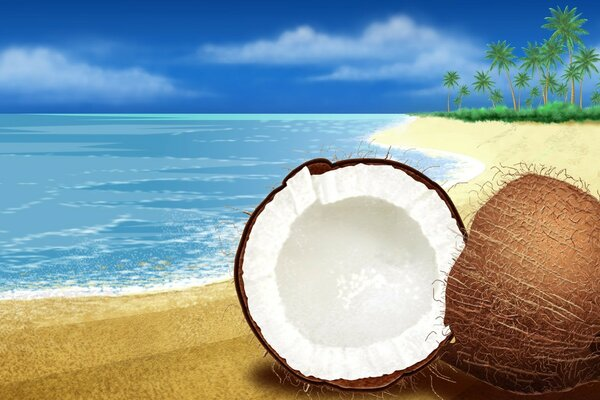 Exotic Coconut On The Beach