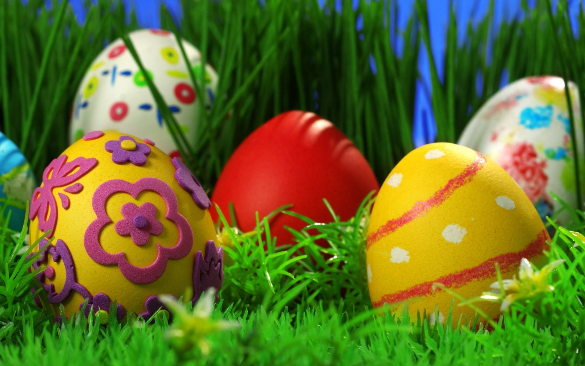 easter egg celebration grass decoration easter egg season traditional nest hunt festival rabbit color bunny gift religion hayfield thread passover