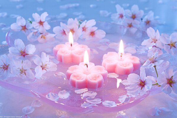 Japanese cherry flowers Candles
