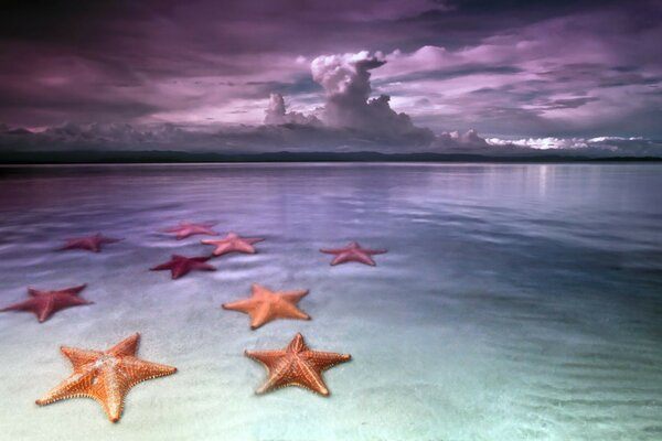 beach sky clouds beach sea stars Sea