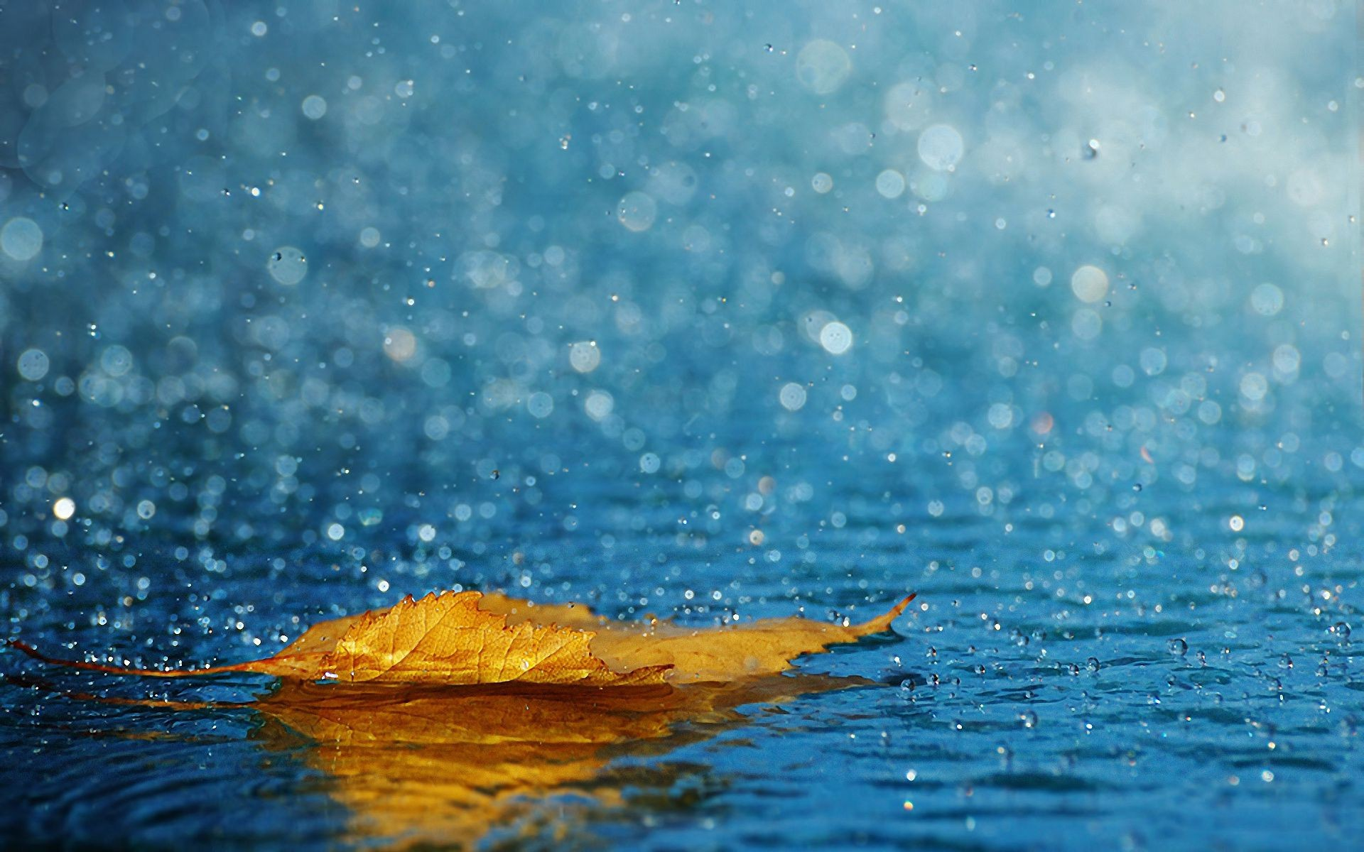 droplets and water wet water splash reflection purity wave turquoise bubble rain nature drop sea underwater ripple liquid clear clean