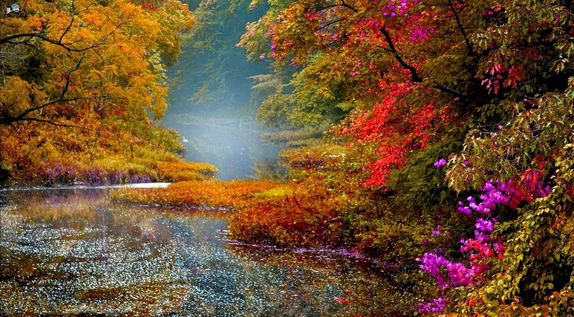 Nature river trees foliage autumn landscape - Phone wallpapers
