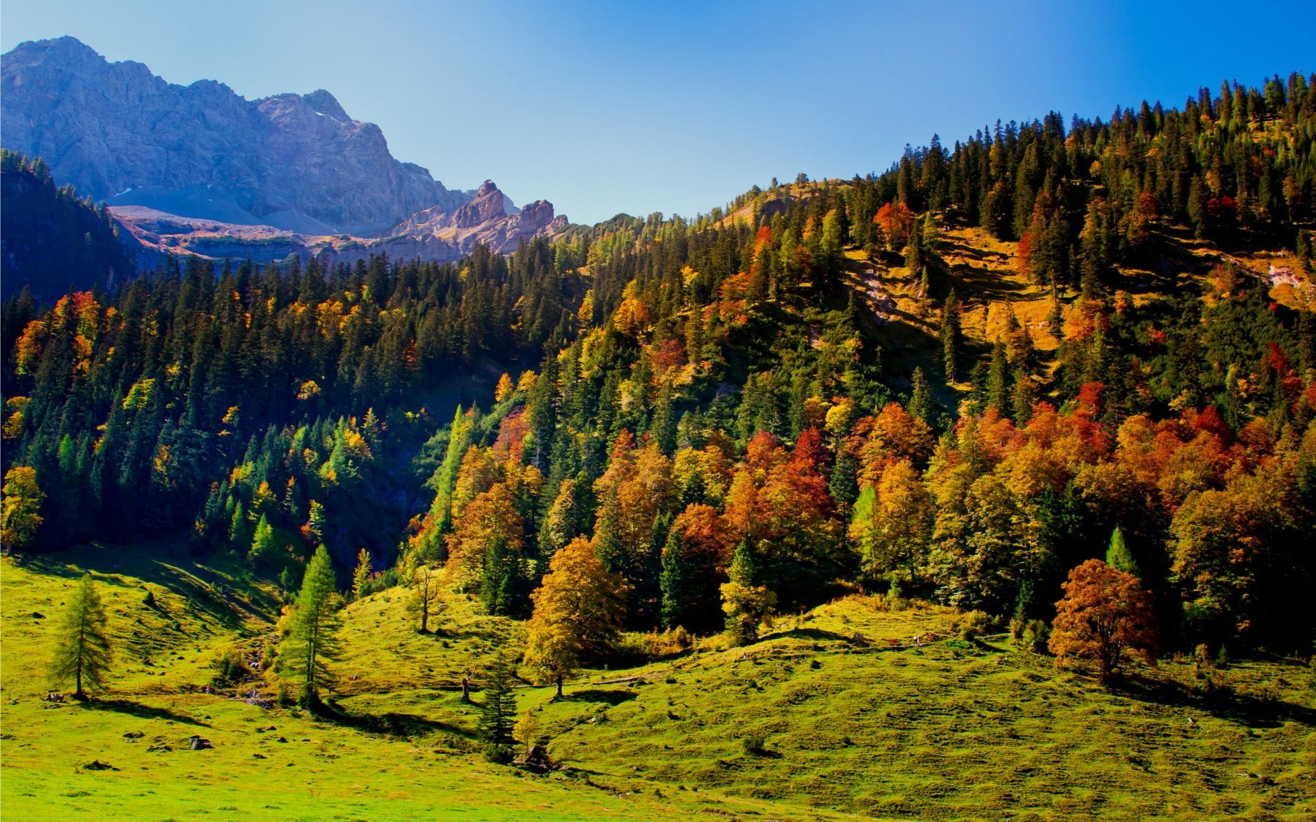 mountains fall wood outdoors nature landscape tree mountain travel scenic sky daylight valley leaf
