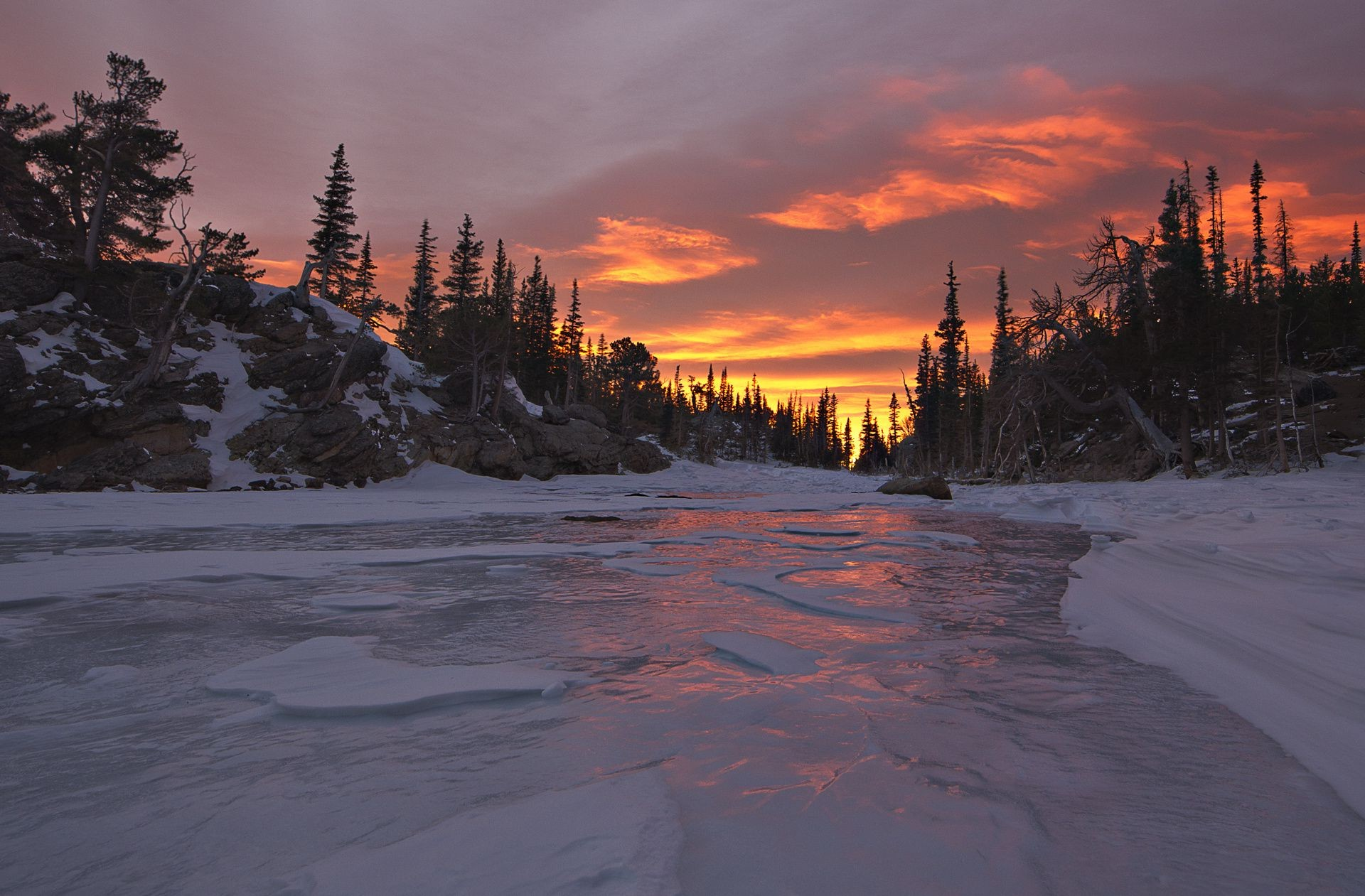 ice sunset river Nature forest winter