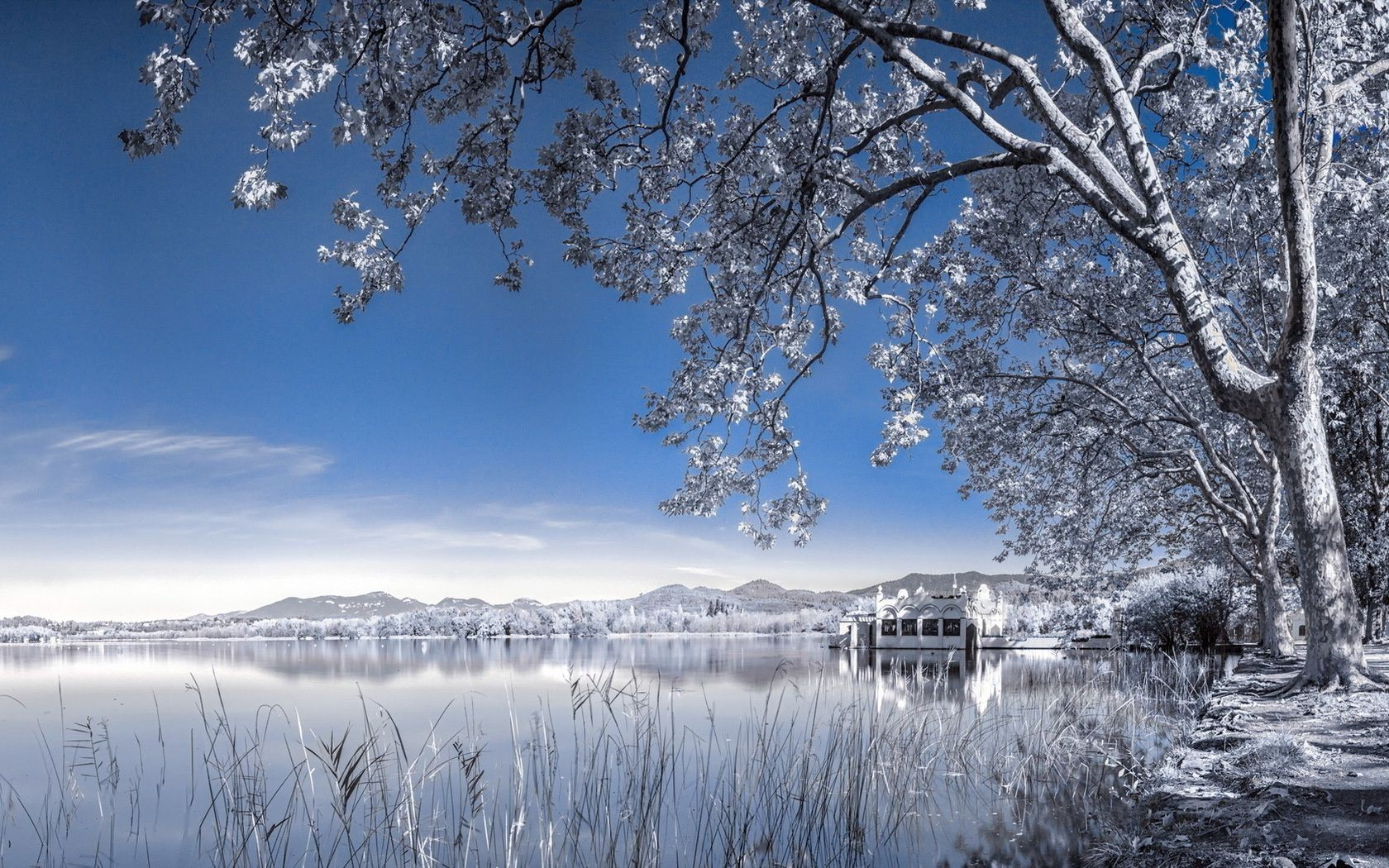 lake landscape infrared