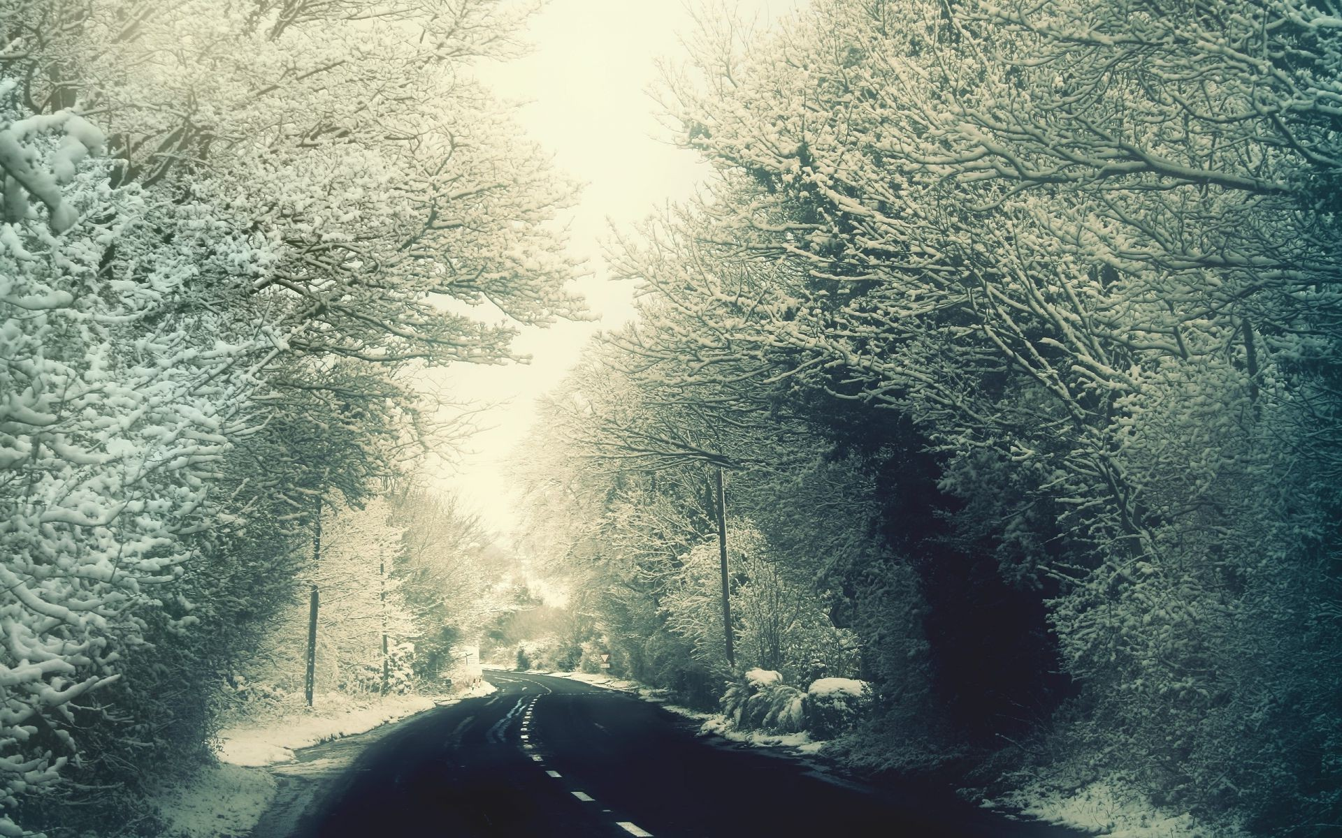 road in winter, the rime on trees, winter highway