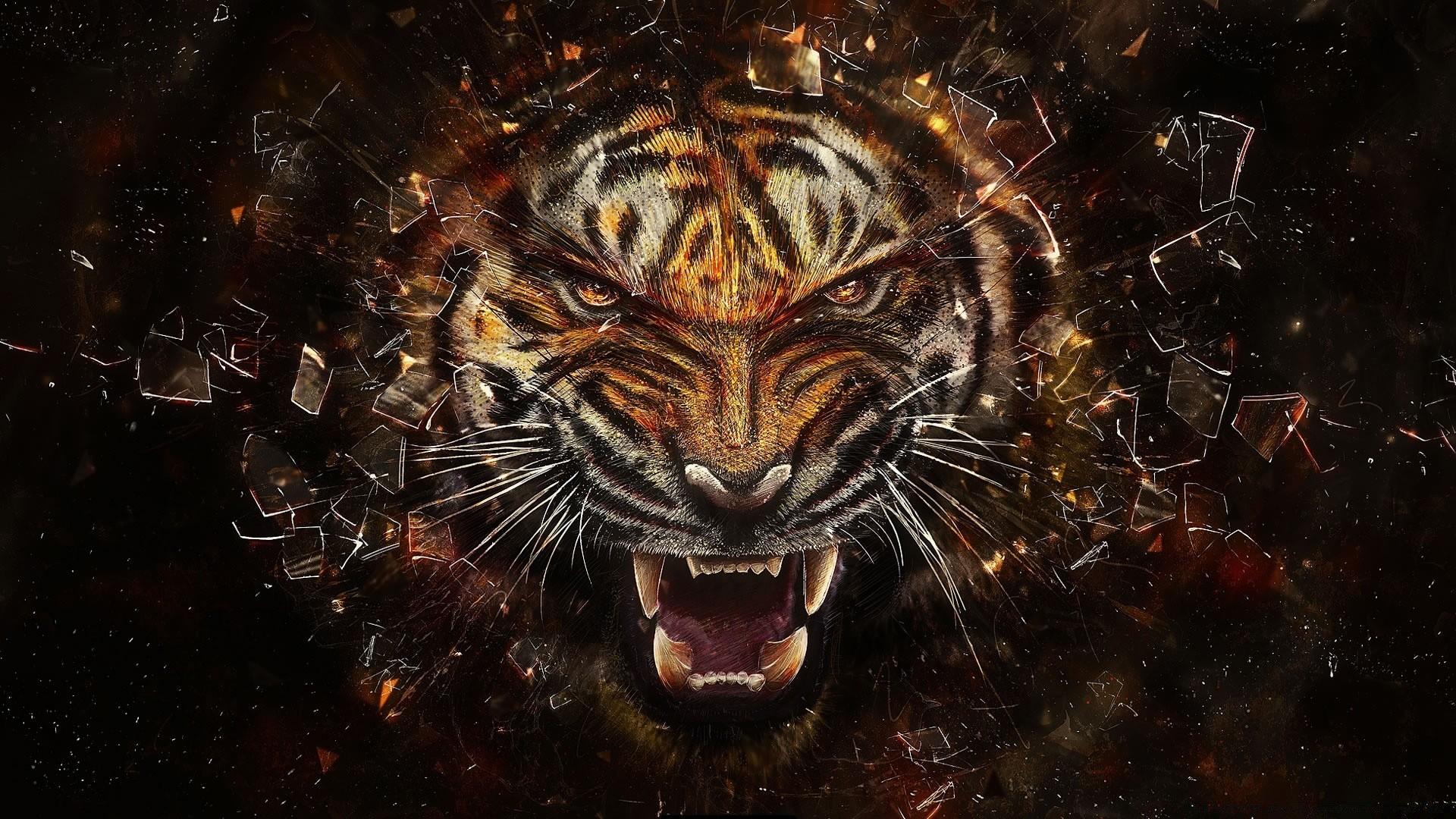 tiger backgrounds. desktop wallpapers for free.