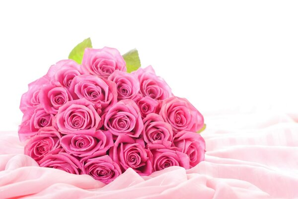 rose Flowers pink roses bouquet pink flowers